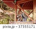 夫婦 シニア 旅行の写真 37355171