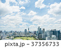 空 街 市街の写真 37356733