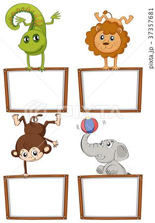 border templates with cute animalsのイラスト素材 37357681 pixta
