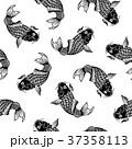 和調 鯉のパターン, 37358113