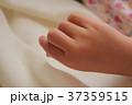 子供の手 37359515