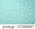 背景 コウバイ 緑色のイラスト 37360667