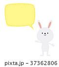 37362806