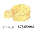 チーズ 37365998