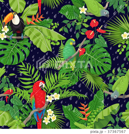 Tropical Birds and Rain Drops Pattern 37367567