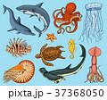 Fishes set or sea creature nautilus pompilius 37368050