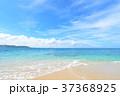 海 ビーチ 砂浜の写真 37368925
