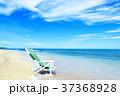 海 ビーチ 砂浜の写真 37368928