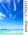 海 空 風景の写真 37368935