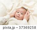赤ちゃん 手 人物の写真 37369258