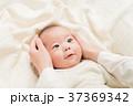 赤ちゃん 手 人物の写真 37369342