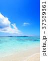 海 ビーチ 砂浜の写真 37369361