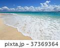 海 ビーチ 砂浜の写真 37369364