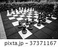 チェス 黒色 黒の写真 37371167