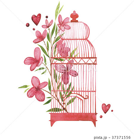 Bird cage with flowers. Watercolor pink set of 37371556
