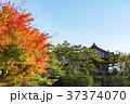 日本三景、紅葉と五大堂 37374070