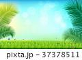 背景 草 場面のイラスト 37378511