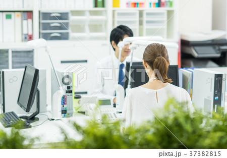 オフィス 37382815
