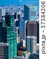 都心 ビル街 オフィス街の写真 37384206