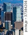 都心 ビル街 オフィス街の写真 37384208