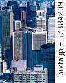 都心 ビル街 オフィス街の写真 37384209
