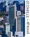 都心 ビル街 オフィス街の写真 37384210