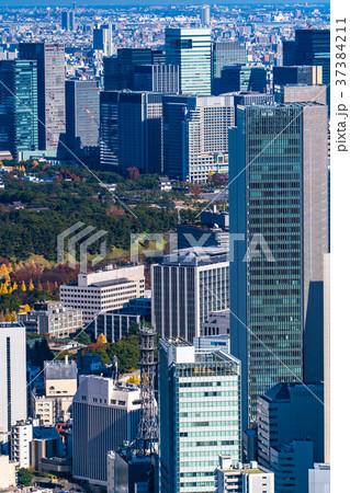 《東京都》東京都心・摩天楼 37384211