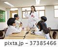초등학생,교사,한국인 37385466