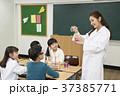 초등학생,교사,한국인 37385771