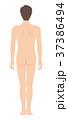 後ろを向いた男性の身体(主線なし) 37386494