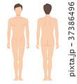 男性の身体(主線なし) 37386496