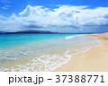 海 ビーチ 砂浜の写真 37388771