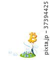 ビットコイン 仮想通貨 コンセプトのイラスト 37394425