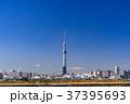《東京都》スカイツリーを望む・爽やかな朝の風景 37395693