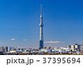 《東京都》スカイツリーを望む・爽やかな朝の風景 37395694
