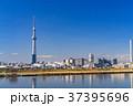 《東京都》スカイツリーを望む・爽やかな朝の風景 37395696