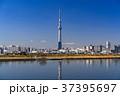 《東京都》スカイツリーを望む・爽やかな朝の風景 37395697