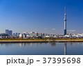 《東京都》スカイツリーを望む・爽やかな朝の風景 37395698