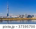 《東京都》スカイツリーを望む・爽やかな朝の風景 37395700