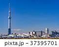 《東京都》スカイツリーを望む・爽やかな朝の風景 37395701