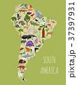南米大陸 動物 フローラのイラスト 37397931