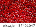 Close-up of a bright red currant. The heap of 37401047
