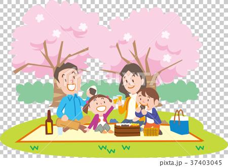 樱花 樱桃树 家庭 37403045