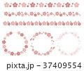 桜ライン フレーム ドット ストライプ ピンク 37409554