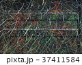 Camouflage net for hidding in nature 37411584