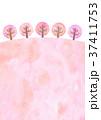 桜並木 (水彩風) 37411753