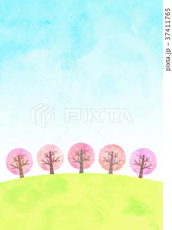 桜並木と空 (水彩風) 37411765