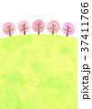 桜並木の丘 (水彩風) 37411766