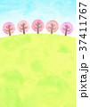 桜並木の丘 (水彩風) 37411767