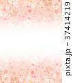 桜 春 フレームのイラスト 37414219